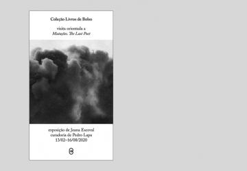 Coleção Livros de Bolso – Visita orientada por Joana Escoval e Pedro Lapa à exposição Mutações. The Last Poet.